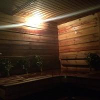 Баня в апартаменте «Близнецы»